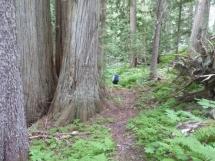 on Hilda trail