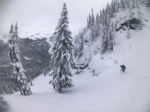 Ski LQ