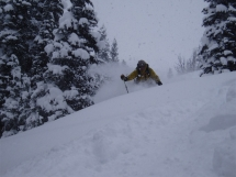 Valkyr Lodge tree skiing